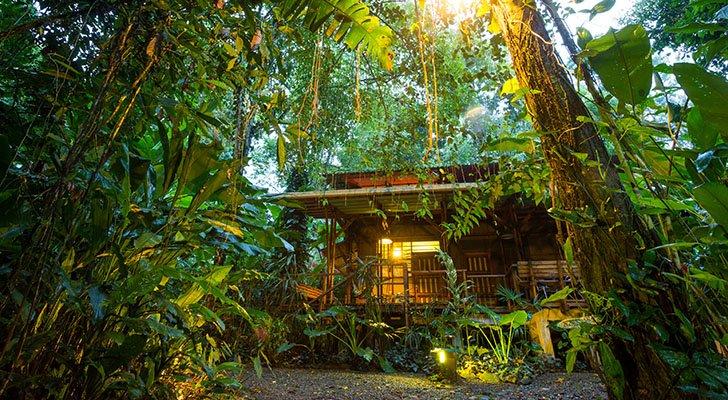 Ökotourismus: Die ultimative Einführung in den sanften Tourismus